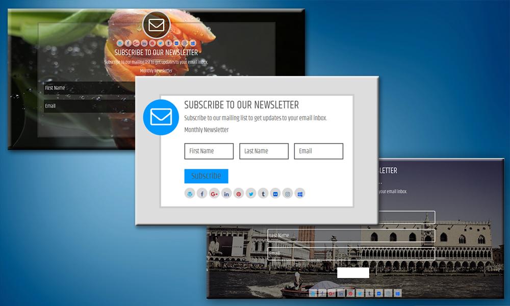 Newsletter Subscription Form Pro