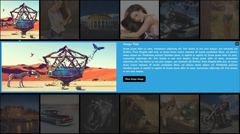 Gallery Pro WordPress Plugin