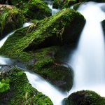 creek-falls-flow-flowing-green