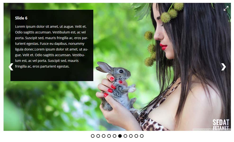 Ultimate Responsive Image Slider Pro WordPress Plugin